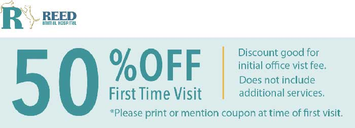 50% off first veterinarian visit